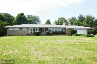 17003 Mcmullen Highway SW, Cresaptown, MD 21502 (#AL9700136) :: Pearson Smith Realty