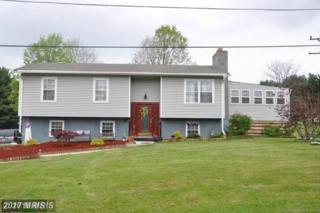 19017 Sloan Avenue, Frostburg, MD 21532 (#AL9785124) :: Pearson Smith Realty