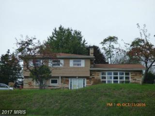 22818 New Shawnee Road SW, Westernport, MD 21562 (#AL9795018) :: LoCoMusings