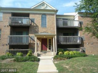 2 Banyan Wood Court #304, Essex, MD 21221 (#BC8736608) :: Pearson Smith Realty
