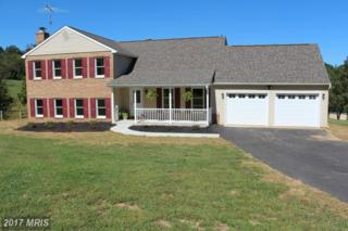 15687 Dover Road, Upperco, MD 21155 (#BC8755905) :: Pearson Smith Realty