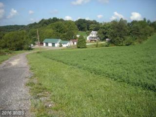 3332 Baker Schoolhouse Road, Freeland, MD 21053 (#BC8764423) :: Pearson Smith Realty