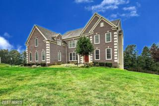 12608 Nancy Lee Court, Reisterstown, MD 21136 (#BC9589774) :: Pearson Smith Realty