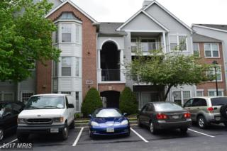 4409 Silverbrook Lane #303, Owings Mills, MD 21117 (#BC9651079) :: Pearson Smith Realty