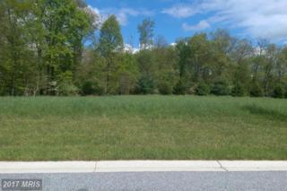 14 Farm Meadow Court, Freeland, MD 21053 (#BC9651901) :: LoCoMusings