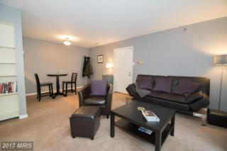 6 Banyan Wood Court #101, Baltimore, MD 21221 (#BC9674492) :: Pearson Smith Realty
