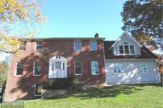 1721 Beechwood Avenue, Essex, MD 21221 (#BC9808854) :: Pearson Smith Realty