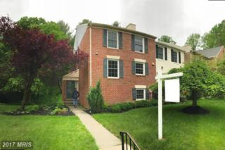 25 Salthill Court, Lutherville Timonium, MD 21093 (#BC9899456) :: Pearson Smith Realty