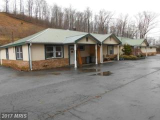 460 Hogback Road, Hyndman, PA 15545 (#BD8561336) :: Pearson Smith Realty