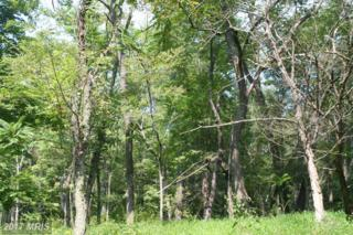 LOT 21 Pine Ridge Road, Clearville, PA 15535 (#BD9766334) :: Pearson Smith Realty