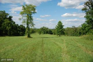 Rooney Road, Hedgesville, WV 25427 (#BE8757646) :: Pearson Smith Realty