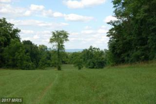 Rooney Road, Hedgesville, WV 25427 (#BE8757659) :: Pearson Smith Realty