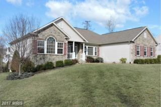 49 Glory Lane, Falling Waters, WV 25419 (#BE9597072) :: Pearson Smith Realty