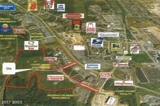 0 Edwin Miller Boulevard, Martinsburg, WV 25401 (#BE9653858) :: Pearson Smith Realty