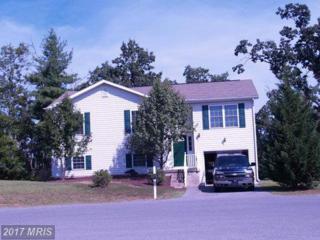 307 Veterans Way, Martinsburg, WV 25401 (#BE9751546) :: LoCoMusings