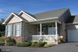 317 South Delaware Ave., Martinsburg, WV 25401 (#BE9783596) :: LoCoMusings