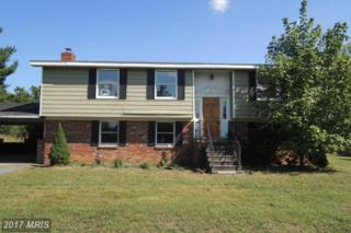 114 Wandering Pine Lane, Falling Waters, WV 25419 (#BE9790282) :: Pearson Smith Realty