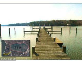425 Tidehead Way, Lusby, MD 20657 (#CA9575624) :: Pearson Smith Realty