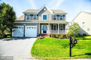 3671 Middle Ground Court, Chesapeake Beach, MD 20732 (#CA9789834) :: Pearson Smith Realty