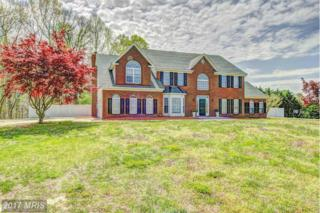 12115 Dunleigh Court, Dunkirk, MD 20754 (#CA9873119) :: Pearson Smith Realty