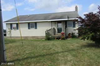 23 Clover Hill Road, Newburg, PA 17240 (#CB9713046) :: LoCoMusings