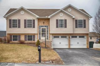 21 Feather Drive, Shippensburg, PA 17257 (#CB9815187) :: Pearson Smith Realty