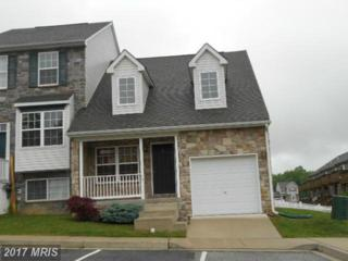 117 Vince Drive, Elkton, MD 21921 (#CC9678813) :: Pearson Smith Realty