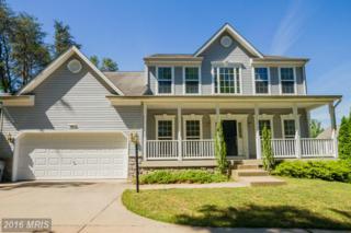 105 Constitution Terrace, Elkton, MD 21921 (#CC9679902) :: Pearson Smith Realty