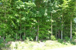LOT 2A Washington Schoolhouse Road, Rising Sun, MD 21911 (#CC9700486) :: Pearson Smith Realty