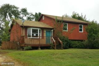 161 Old Chestnut Road, Elkton, MD 21921 (#CC9780481) :: Pearson Smith Realty