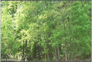 Holly Springs Road, Nanjemoy, MD 20662 (#CH8679282) :: LoCoMusings