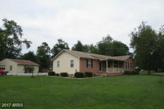 10183 Waverly Point Boulevard, Newburg, MD 20664 (#CH9696264) :: Pearson Smith Realty