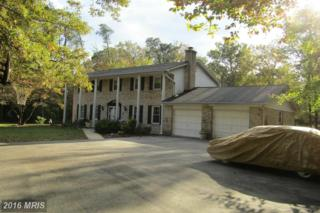 6965 Wood Glen Drive, Hughesville, MD 20637 (#CH9803493) :: Pearson Smith Realty