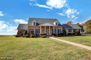 13785 Waverly Point Road, Newburg, MD 20664 (#CH9804763) :: LoCoMusings