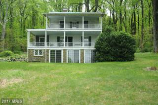 18983 Blue Ridge Mtn Road, Bluemont, VA 20135 (#CL9649941) :: Pearson Smith Realty