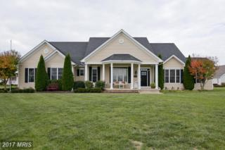 309 Early Drive, Berryville, VA 22611 (#CL9810071) :: Pearson Smith Realty