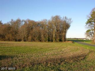 LOT 1 Brunkhorst Road, Preston, MD 21655 (#CM9543610) :: Pearson Smith Realty