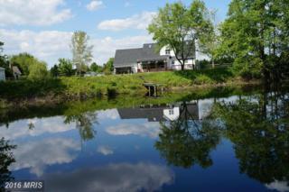 23741 Solitude Drive, Henderson, MD 21640 (#CM9595101) :: Pearson Smith Realty