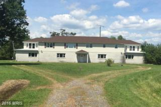 1810 Oak Grove Road, Federalsburg, MD 21632 (#CM9746846) :: Pearson Smith Realty