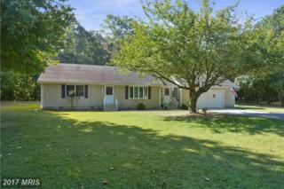 8105 Haven Street, Denton, MD 21629 (#CM9767587) :: Pearson Smith Realty