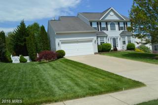 532 Rich Mar Street, Westminster, MD 21158 (#CR9634846) :: Pearson Smith Realty