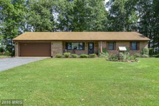 4355 Ruggles Road, Taneytown, MD 21787 (#CR9757984) :: Pearson Smith Realty