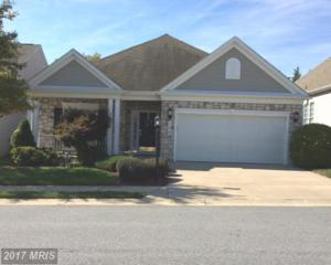 135 Saddletop Drive #387, Taneytown, MD 21787 (#CR9791635) :: Pearson Smith Realty