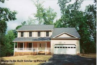 15490 Riley School Lane, Amissville, VA 20106 (#CU9764533) :: LoCoMusings