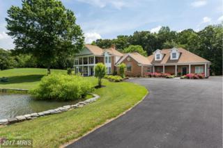 19427 Rolling Hills Drive, Culpeper, VA 22701 (#CU9810413) :: Pearson Smith Realty