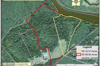 22335 Hicks Landing Road, Rappahannock Academy, VA 22538 (#CV7881972) :: Pearson Smith Realty