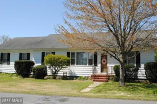 5 Linkwood Road, East New Market, MD 21631 (#DO9626893) :: Pearson Smith Realty