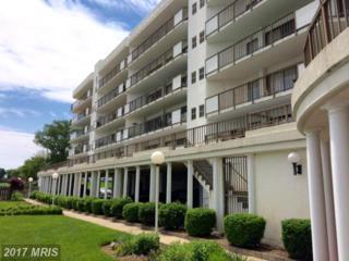 128 Prince Street #508, Tappahannock, VA 22560 (#ES9676826) :: Pearson Smith Realty