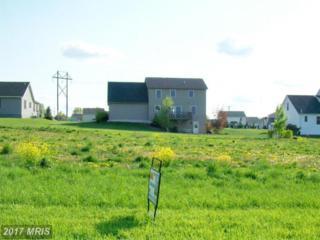 100 Eugene Drive, Chambersburg, PA 17202 (#FL7317064) :: LoCoMusings