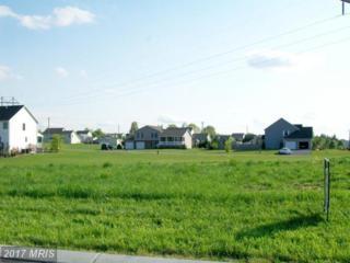 97 Eugene Drive, Chambersburg, PA 17202 (#FL7317071) :: LoCoMusings